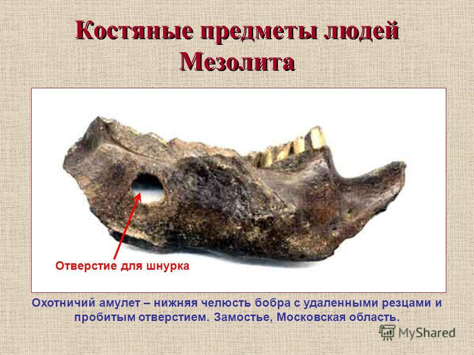 Костяные предметы людей Мезолита Охотничий амулет – нижняя челюсть бобра с удаленными резцами и пробитым отверстием. Замостье, Московская область. Отверстие для шнурка
