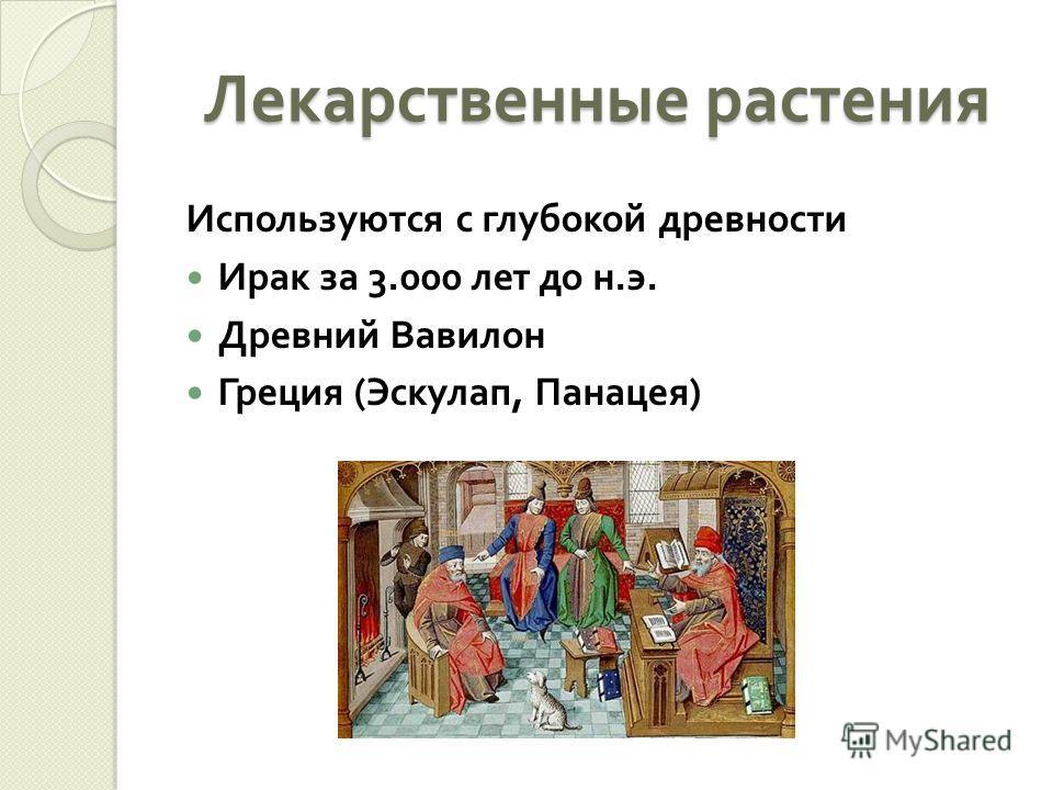 Лекарственные растения Используются с глубокой древности Ирак за 3.000 лет до н. э. Древний Вавилон Греция ( Эскулап, Панацея )