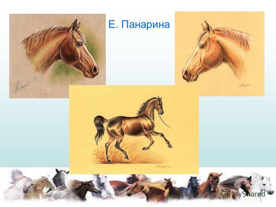 Е. Панарина