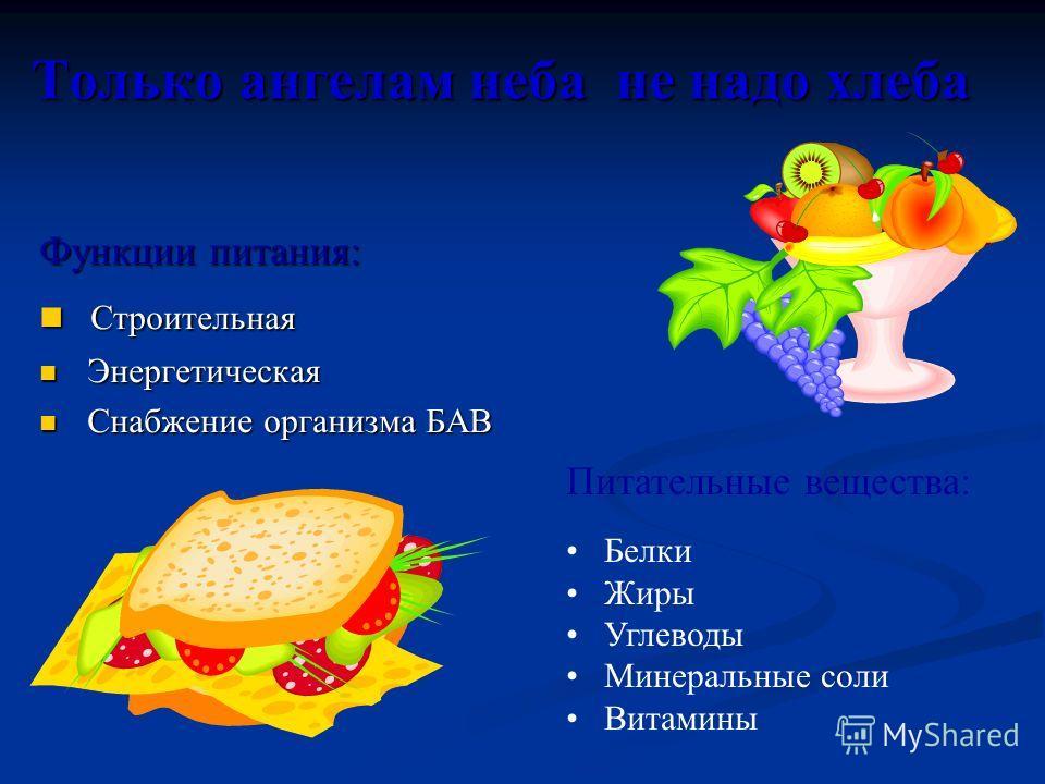Только ангелам неба не надо хлеба Функции питания: Строительная Строительная Энергетическая Энергетическая Снабжение организма БАВ Снабжение организма БАВ Питательные вещества: Белки Жиры Углеводы Минеральные соли Витамины