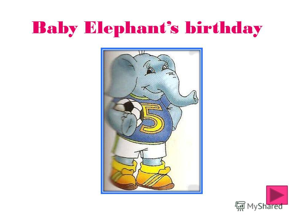 Baby Elephants birthday