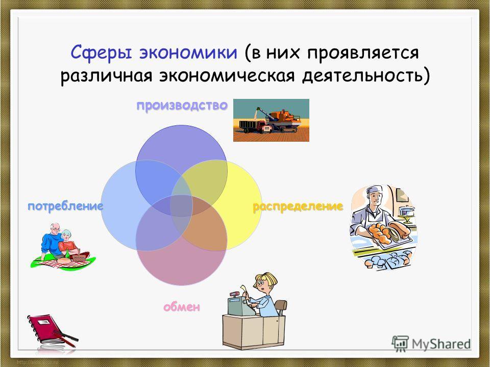 Сферы экономики (в них проявляется различная экономическая деятельность)