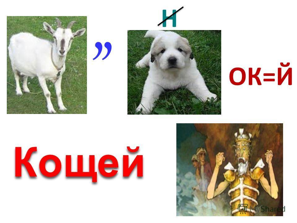 ,, Н ОК=Й Кощей
