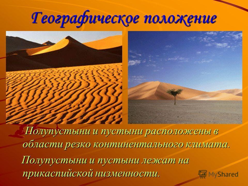 Географическое положение Полупустыни и пустыни расположены в области резко континентального климата. Полупустыни и пустыни расположены в области резко континентального климата. Полупустыни и пустыни лежат на прикаспийской низменности. Полупустыни и п