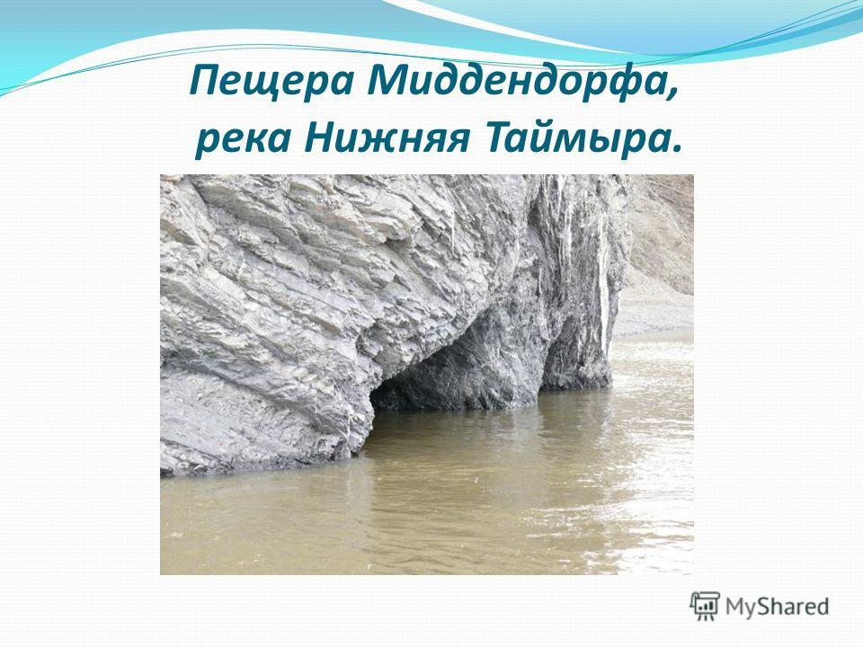 Пещера Миддендорфа, река Нижняя Таймыра.