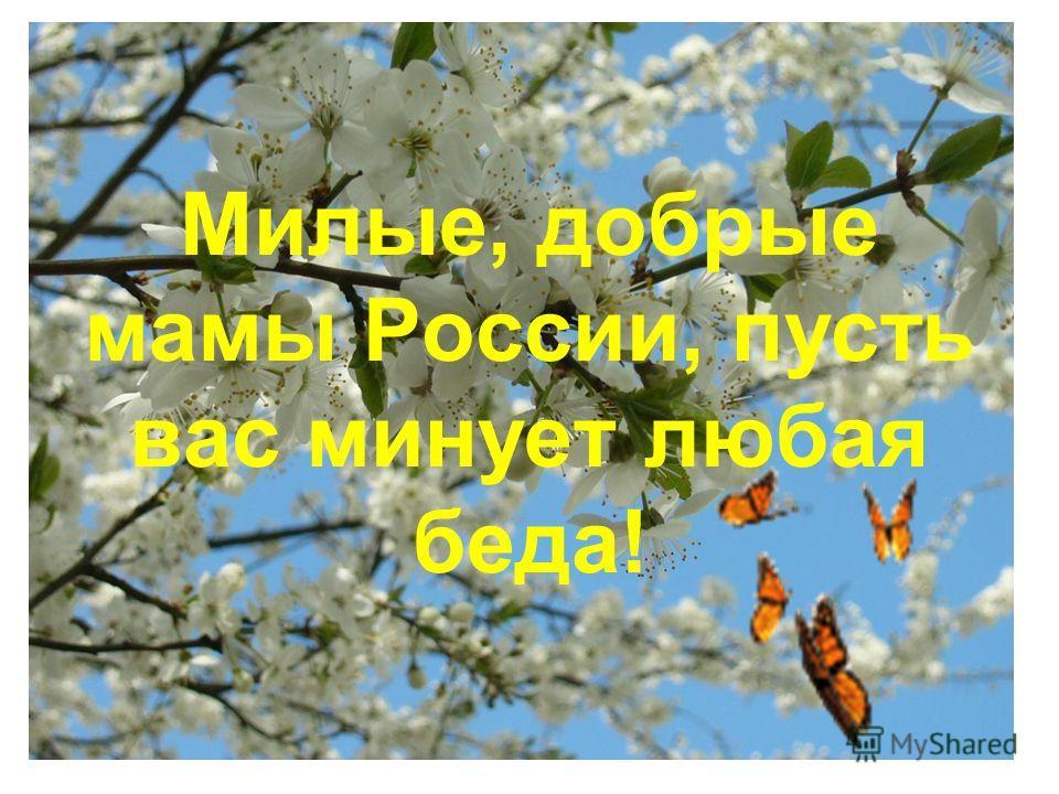 Милые, добрые мамы России, пусть вас минует любая беда!