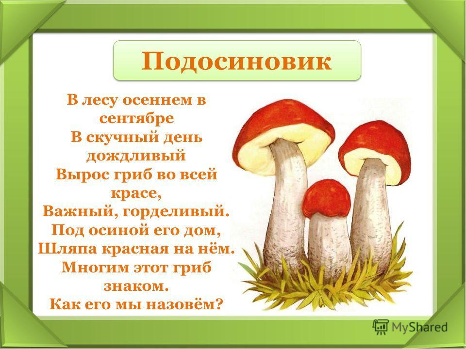 В лесу осеннем в сентябре В скучный день дождливый Вырос гриб во всей красе, Важный, горделивый. Под осиной его дом, Шляпа красная на нём. Многим этот гриб знаком. Как его мы назовём? Подосиновик