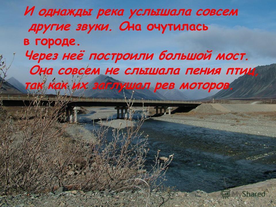Несла свои воды река по цветущей тундре, мимо зеленых тундровых кустарников……..