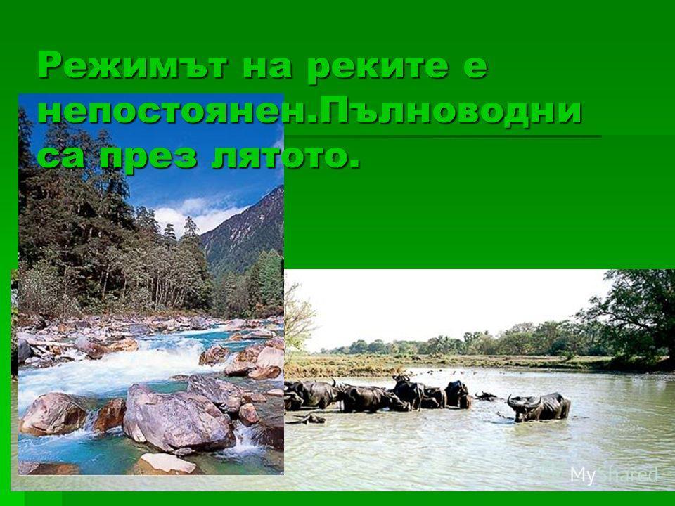 Режимът на реките е непостоянен.Пълноводни са през лятото.
