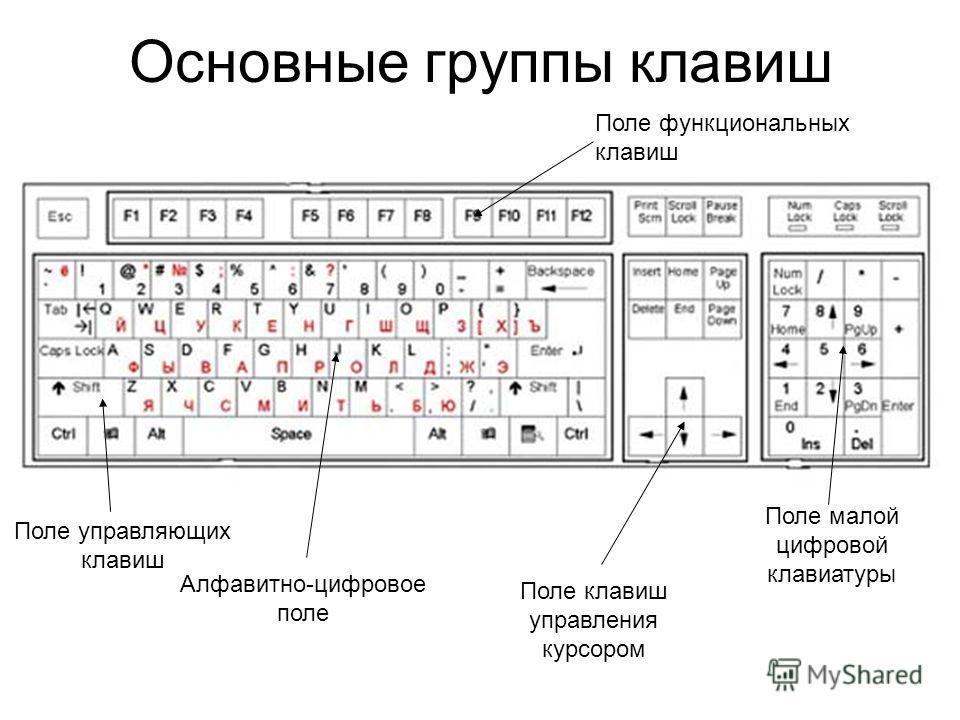 Основные группы клавиш Алфавитно-цифровое поле Поле управляющих клавиш Поле клавиш управления курсором Поле малой цифровой клавиатуры Поле функциональных клавиш