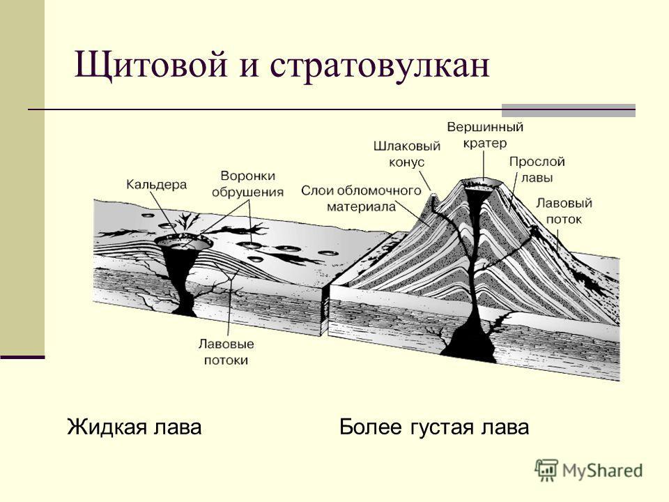 Щитовой и стратовулкан Жидкая лава Более густая лава