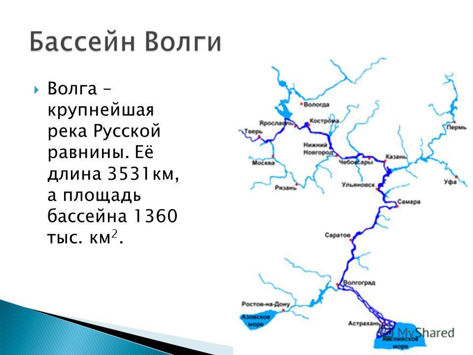 Волга – крупнейшая река Русской равнины. Её длина 3531км, а площадь бассейна 1360 тыс. км 2.