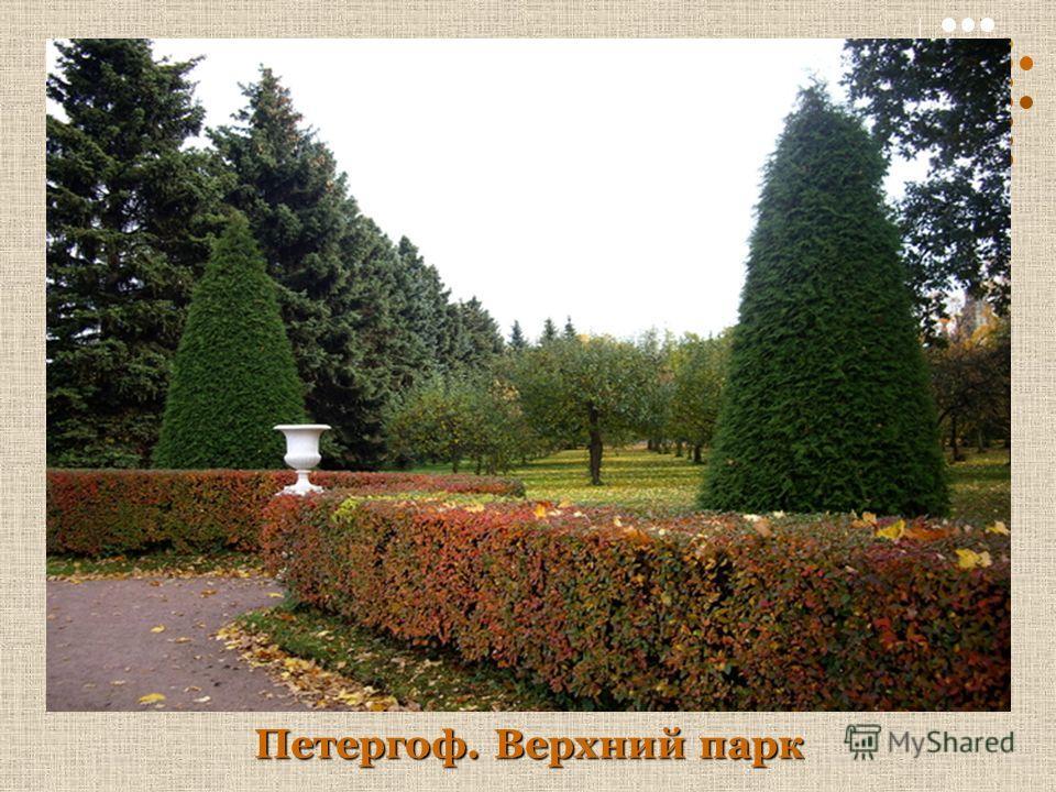 Петергоф. Верхний парк