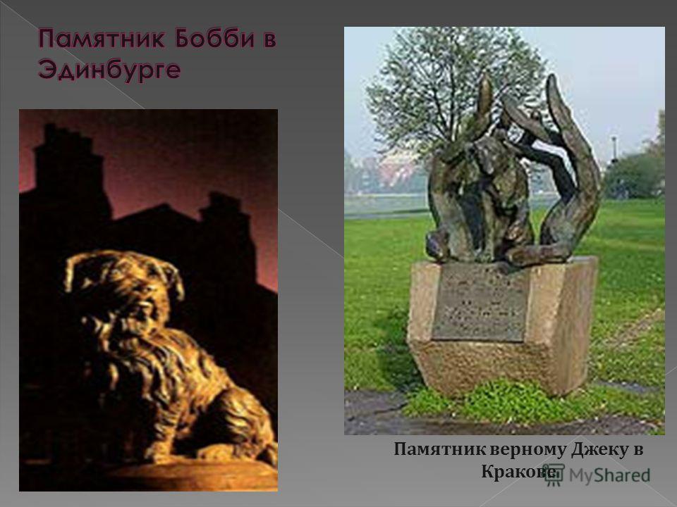 Памятник верному Джеку в Кракове