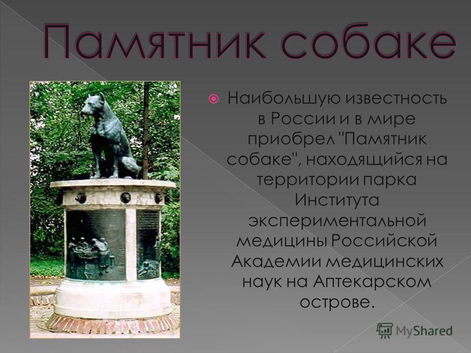 Наибольшую известность в России и в мире приобрел Памятник собаке, находящийся на территории парка Института экспериментальной медицины Российской Академии медицинских наук на Аптекарском острове.