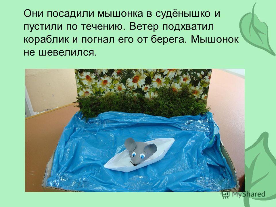 Они посадили мышонка в судёнышко и пустили по течению. Ветер подхватил кораблик и погнал его от берега. Мышонок не шевелился.