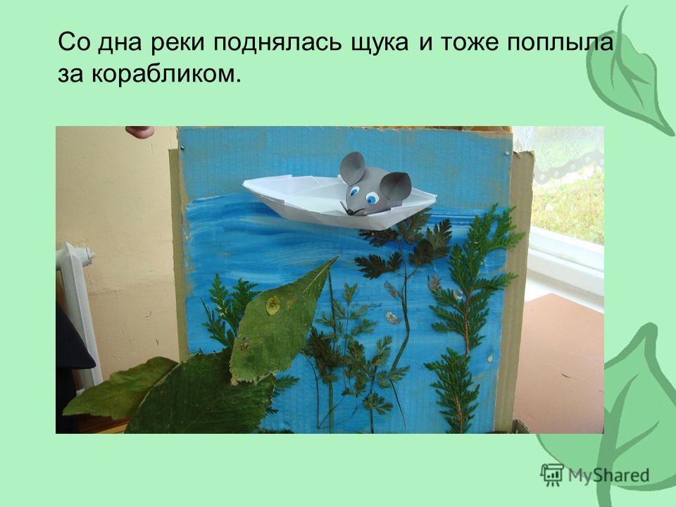 Со дна реки поднялась щука и тоже поплыла за корабликом.