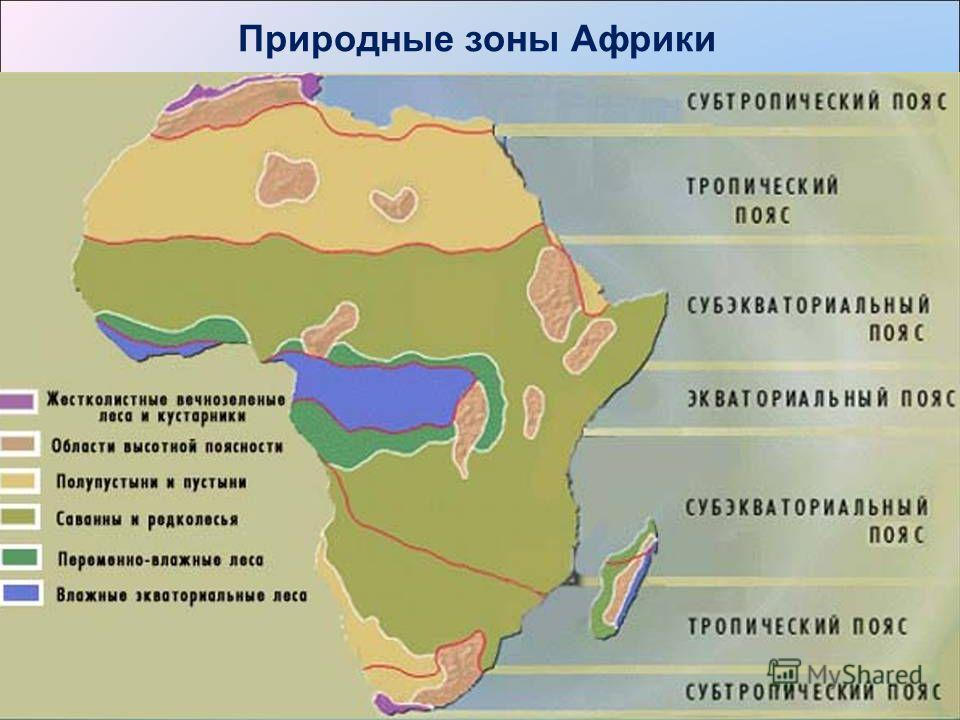 Ролик о природных зонах африки в 7 классе