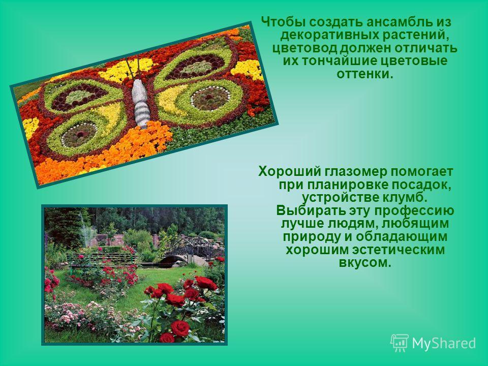 Чтобы создать ансамбль из декоративных растений, цветовод должен отличать их тончайшие цветовые оттенки. Хороший глазомер помогает при планировке посадок, устройстве клумб. Выбирать эту профессию лучше людям, любящим природу и обладающим хорошим эсте