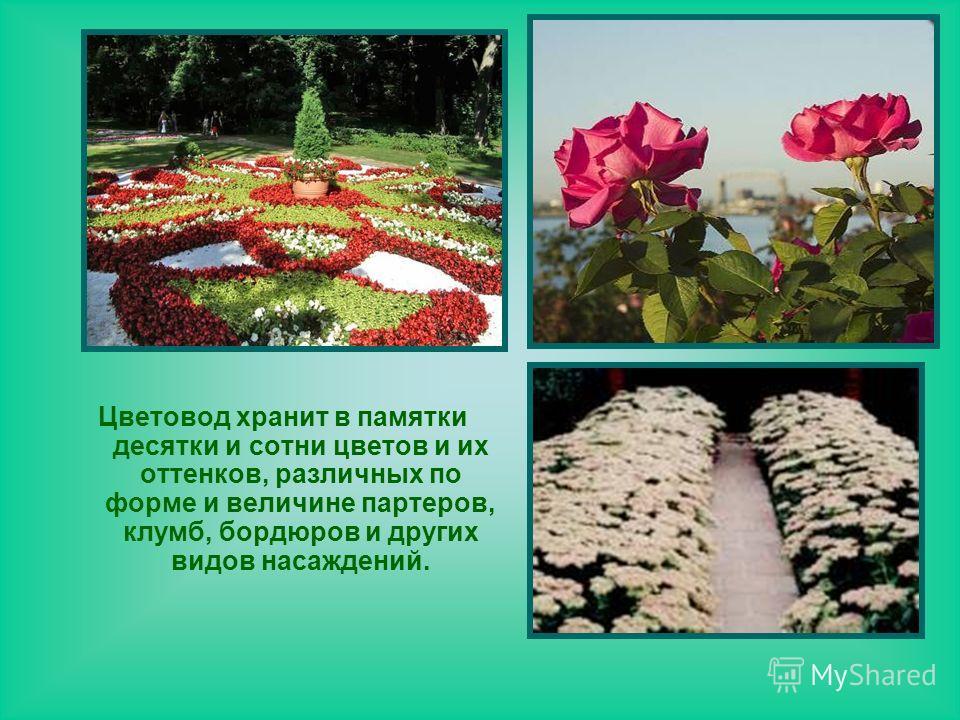 Цветовод хранит в памятки десятки и сотни цветов и их оттенков, различных по форме и величине партеров, клумб, бордюров и других видов насаждений.
