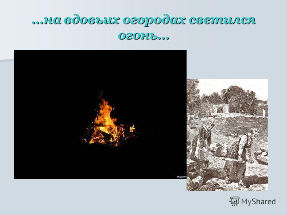 …на вдовьих огородах светился огонь…