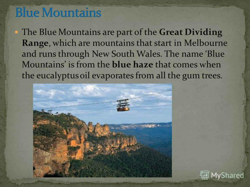 The Blue Mountains are part of the Great Dividing Range, which are mountains that start in Melbourne and runs through New South Wales. The name Blue Mountains is from the blue haze that comes when the eucalyptus oil evaporates from all the gum trees.