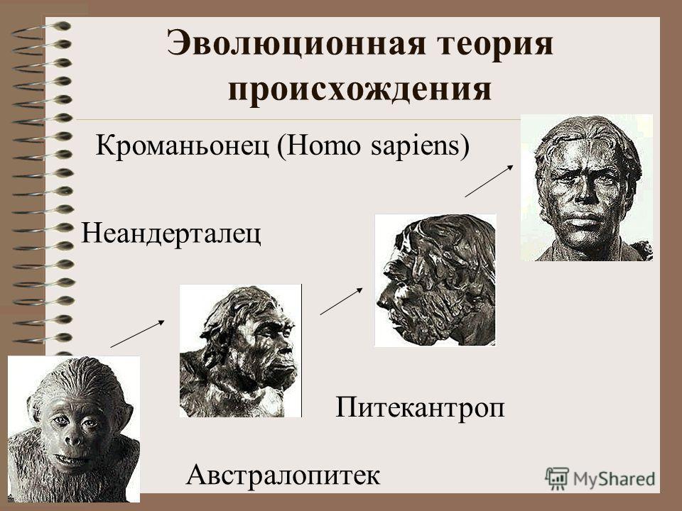 Эволюционная теория происхождения Австралопитек Питекантроп Неандерталец Кроманьонец (Homo sapiens)