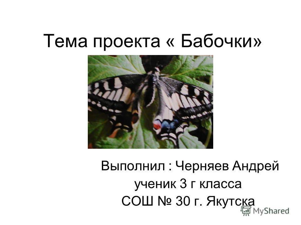 Тема проекта « Бабочки» Выполнил : Черняев Андрей ученик 3 г класса СОШ 30 г. Якутска