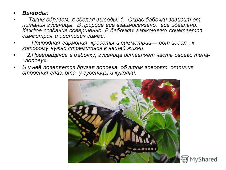 Выводы: Таким образом, я сделал выводы: 1. Окрас бабочки зависит от питания гусеницы. В природе всё взаимосвязано, все идеально. Каждое создание совершенно. В бабочках гармонично сочетается симметрия и цветовая гамма. Природная гармония красоты и сим