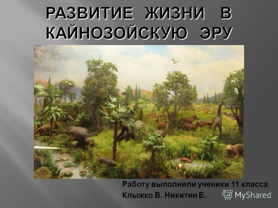 Работу выполнили ученики 11 класса Клыжко В. Никитин Е.