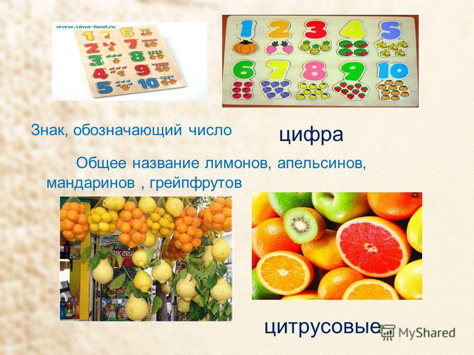 Знак, обозначающий число Общее название лимонов, апельсинов, мандаринов, грейпфрутов цифра цитрусовые