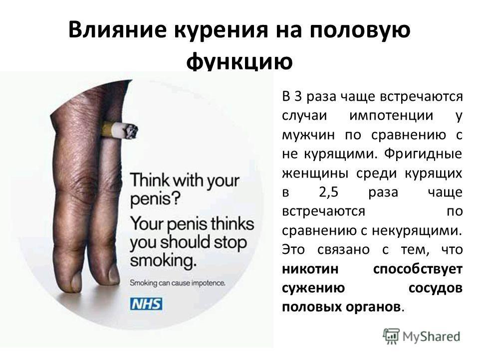 Влияние курения на половую функцию В 3 раза чаще встречаются случаи импотенции у мужчин по сравнению с не курящими. Фригидные женщины среди курящих в 2,5 раза чаще встречаются по сравнению с некурящими. Это связано с тем, что никотин способствует суж