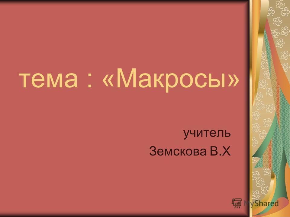 тема : «Макросы» учитель Земскова В.Х