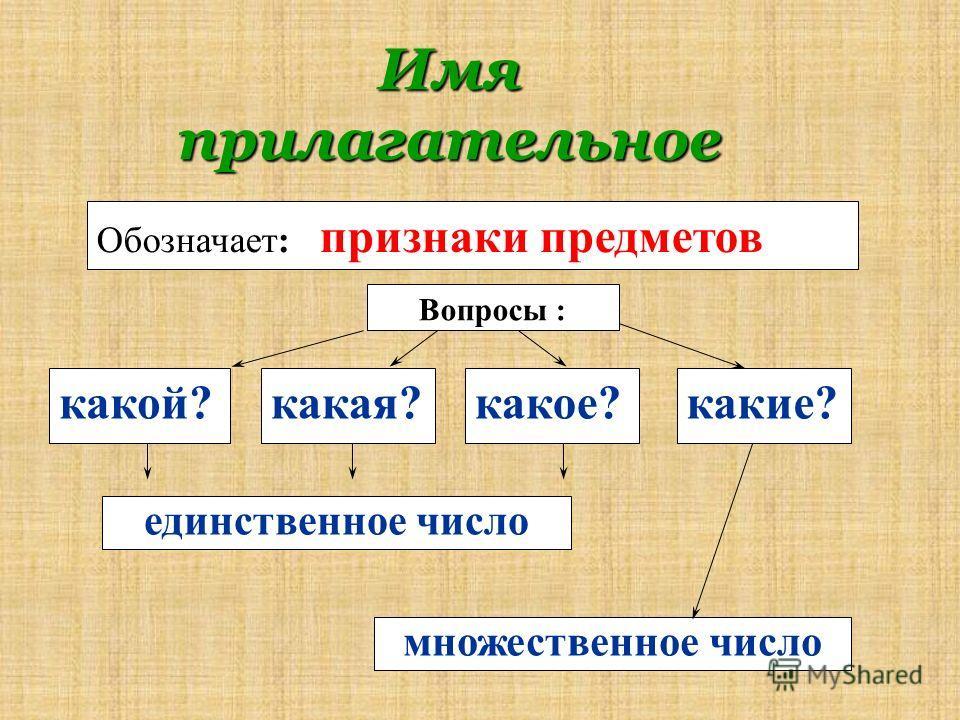 Имя прилагательное какой? Вопросы : Обозначает: признаки предметов какая?какое?какие? единственное число множественное число