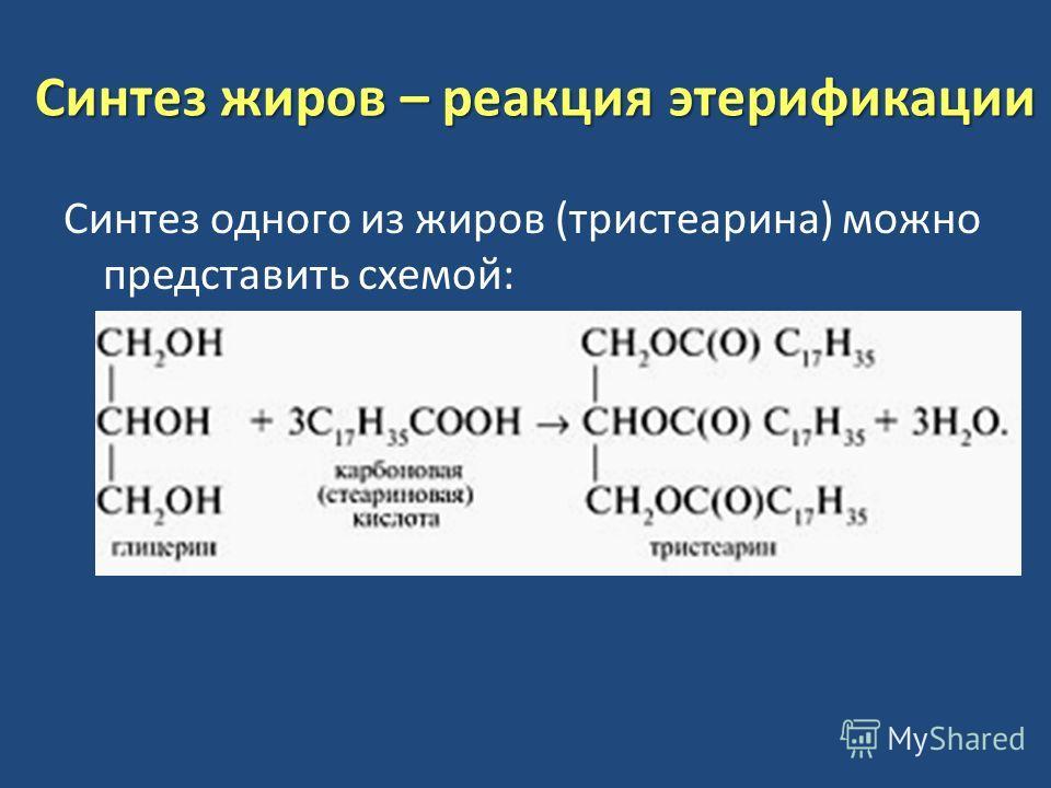 Синтез жиров – реакция этерификации Синтез одного из жиров (тристеарина) можно представить схемой:
