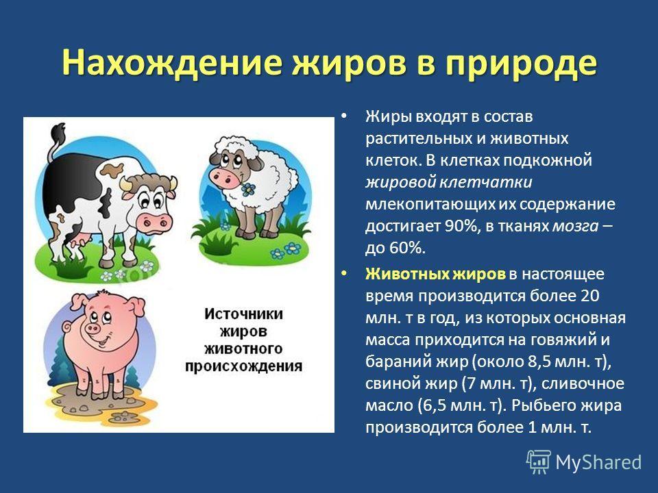 Гдз по татарскому языку 9 класс хайдарова