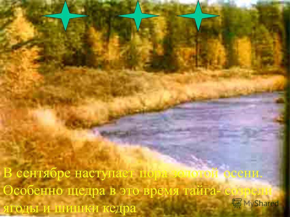 Но в солнечные дни сияет оно необыкновенной чистотой и яркостью зелени,голубизной неба и Байкала.