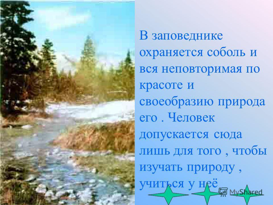 Баргузинский заповедник организован в1916 году. Общая площадь -263000 га. Наибольшая высота Баргузинского хребта 2840 метров над уровнем моря. Средняя годовая температура минус 4,4. Высших растений - свыше 600 видов. Зверей -39 видов. Птиц -около 230