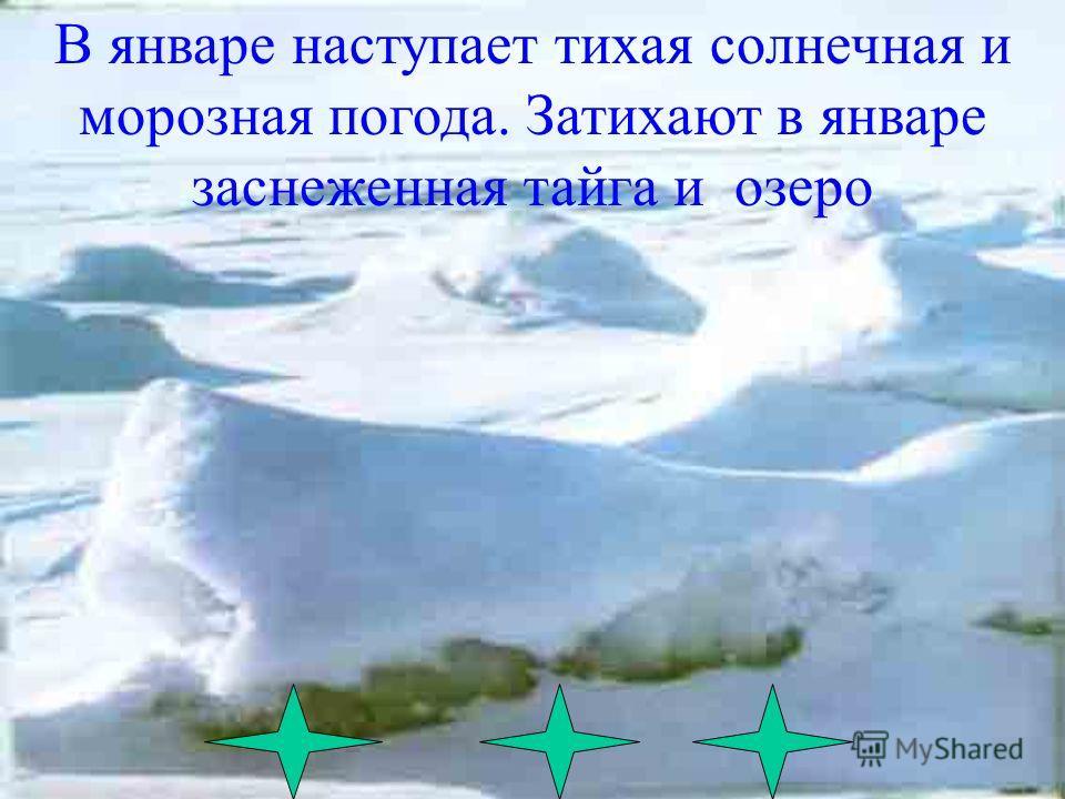 Штормами и пургой обрушивается зима на Баргузинский заповедник Зима здесь долгая, снежная, но по сибирским меркам- довольно мягкая Зато полгода длится она на побережье Байкала А гольцах лежит 10 месяцев.