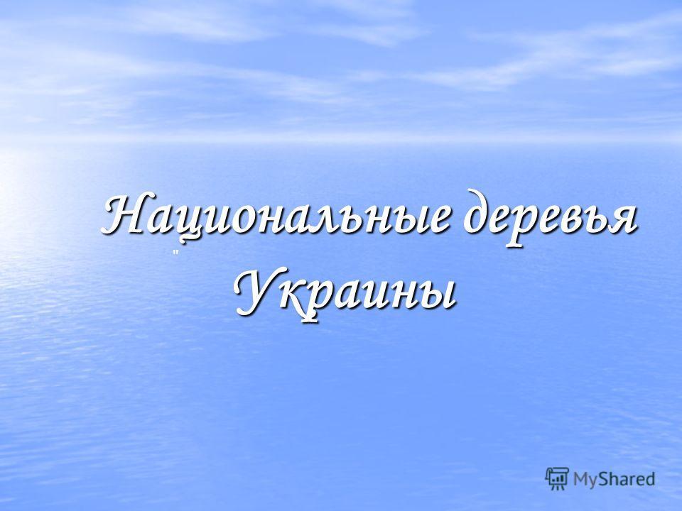 Национальные деревья Украины Национальные деревья Украины