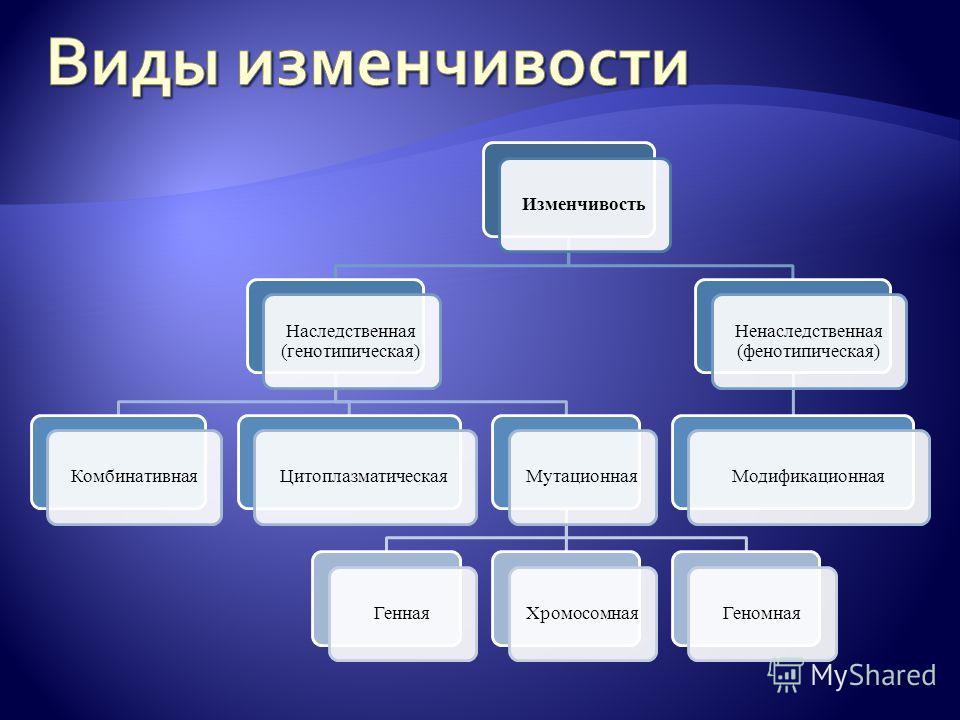 Изменчивость Наследственная (генотипическая) КомбинативнаяЦитоплазматическаяМутационнаяГеннаяХромосомнаяГеномная Ненаследственная (фенотипическая) Модификационная