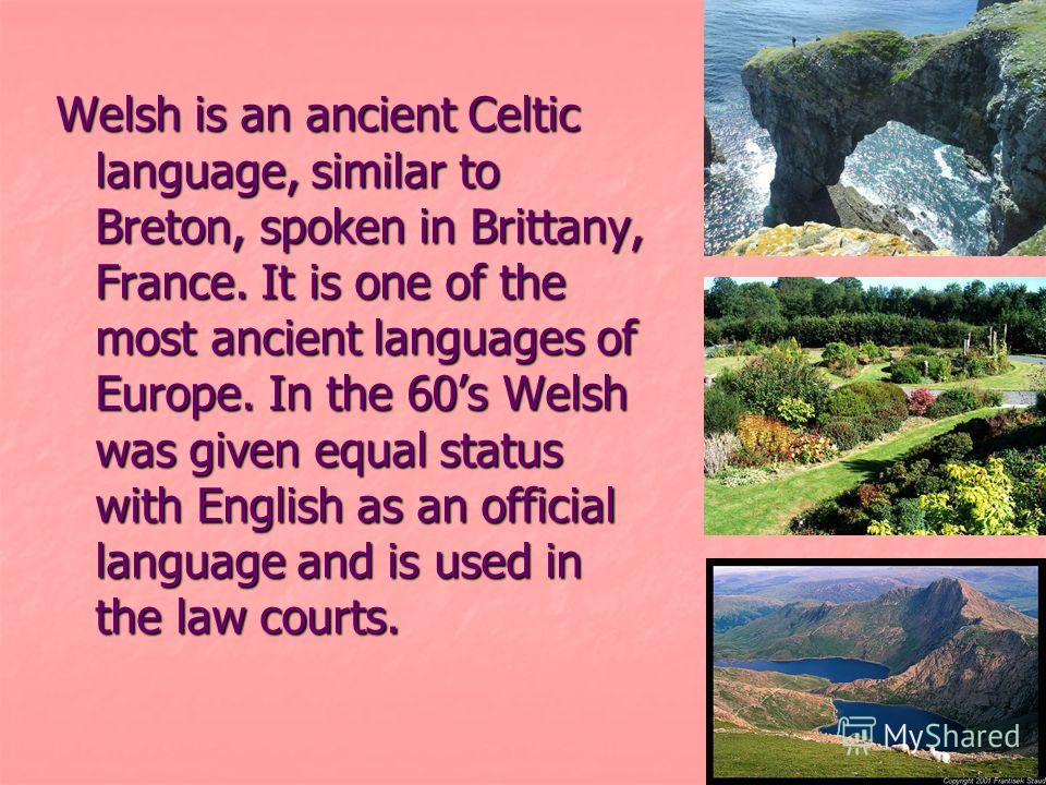 Welsh is an ancient Celtic language, similar to Breton, spoken in Brittany, France. It is one of the most ancient languages of Europe. In the 60s Welsh was given equal status with English as an official language and is used in the law courts.