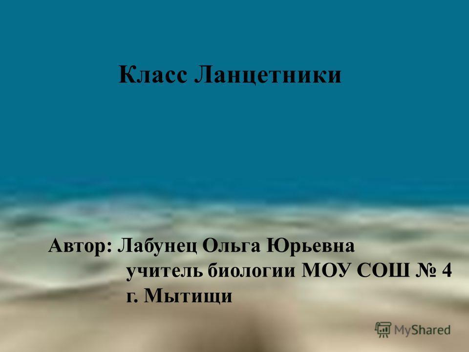 Класс Ланцетники Автор: Лабунец Ольга Юрьевна учитель биологии МОУ СОШ 4 г. Мытищи