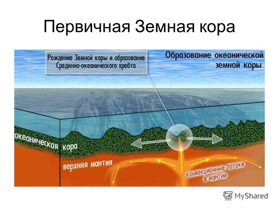 Первичная Земная кора