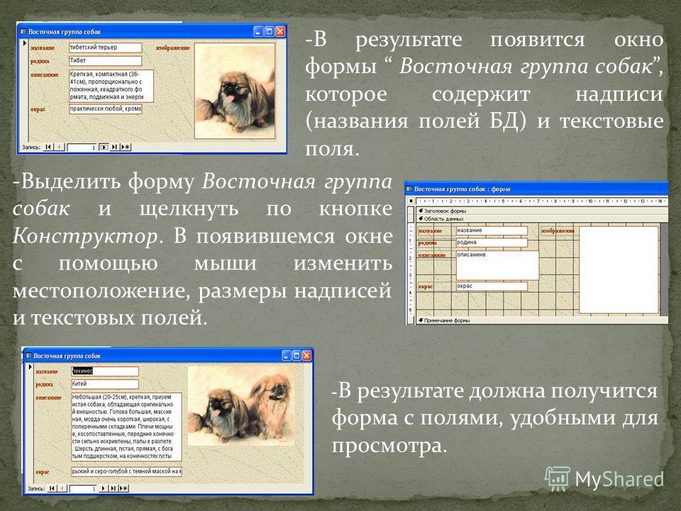-В результате появится окно формы Восточная группа собак, которое содержит надписи (названия полей БД) и текстовые поля. -Выделить форму Восточная группа собак и щелкнуть по кнопке Конструктор. В появившемся окне с помощью мыши изменить местоположени