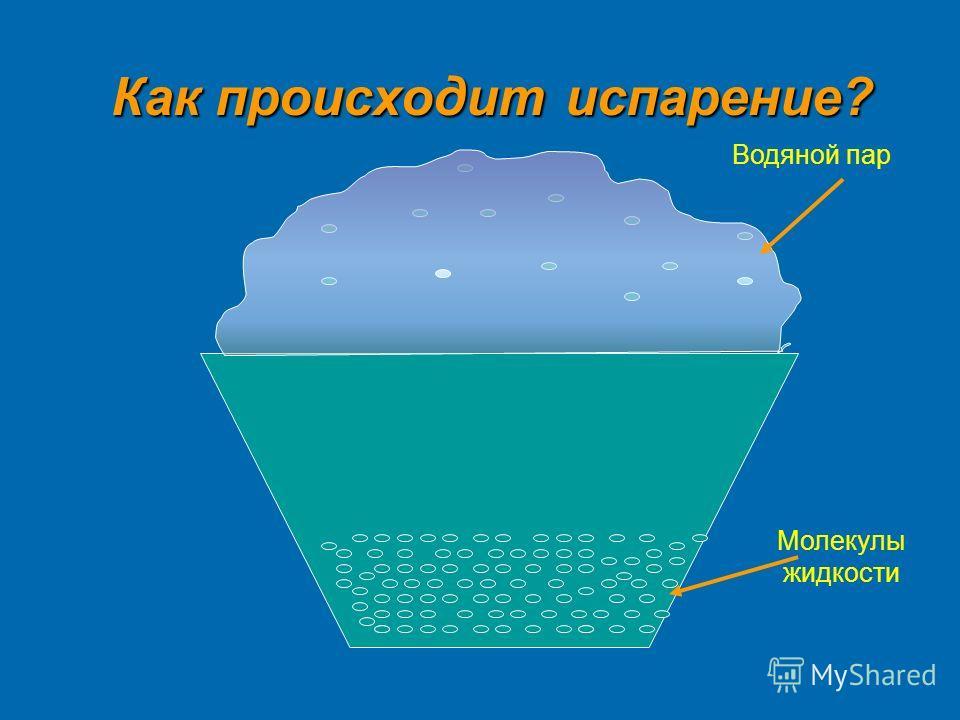 Как происходит испарение? Водяной пар Молекулы жидкости