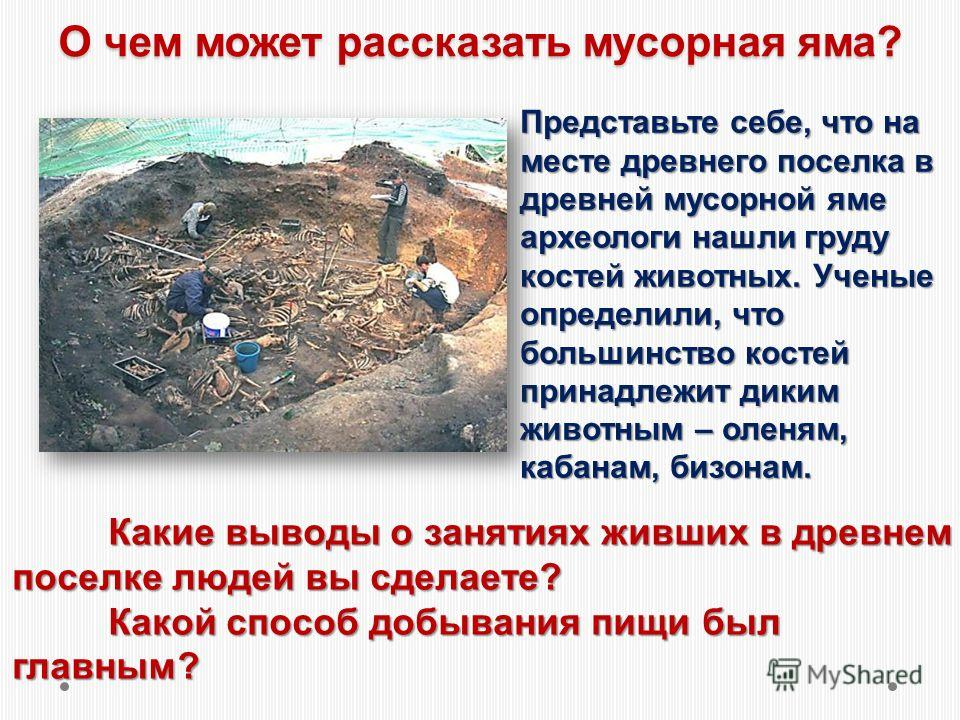 О чем может рассказать мусорная яма? Представьте себе, что на месте древнего поселка в древней мусорной яме археологи нашли груду костей животных. Ученые определили, что большинство костей принадлежит диким животным – оленям, кабанам, бизонам. Какие