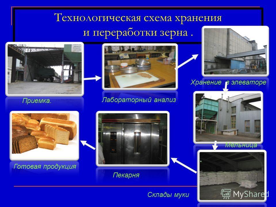Технологическая схема хранения и переработки зерна. Приемка. Хранение в элеваторе Мельница Пекарня Склады муки Готовая продукция Лабораторный анализ