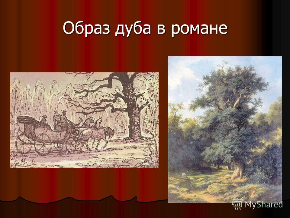 Образ дуба в романе