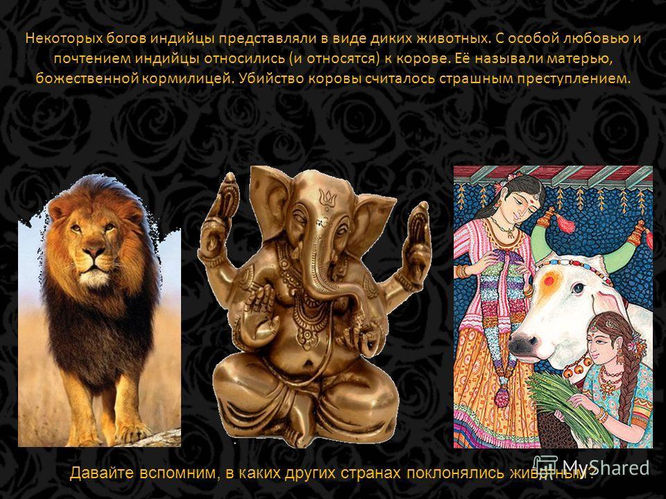 Некоторых богов индийцы представляли в виде диких животных. С особой любовью и почтением индийцы относились (и относятся) к корове. Её называли матерью, божественной кормилицей. Убийство коровы считалось страшным преступлением. Давайте вспомним, в ка